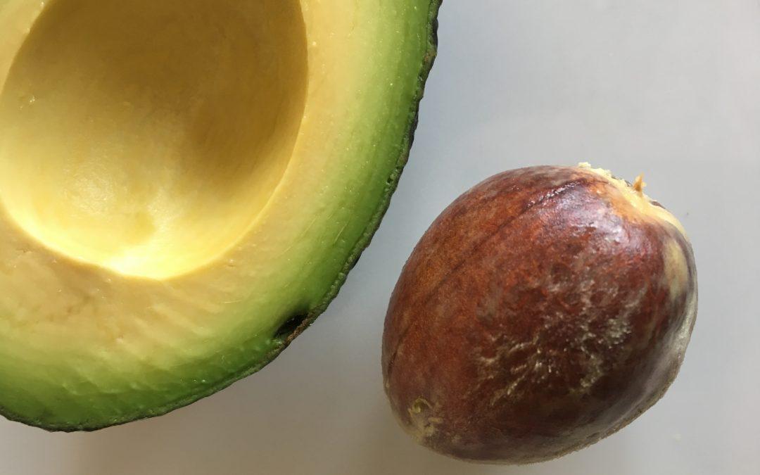 Gesundheitsprävention mit Avocadokernen