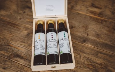 Olivenölernte 2019